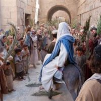 Christ the King, Priest, and Judge: Matthew 21:1-22